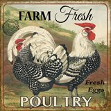 Farmer Fresh Poultry-A