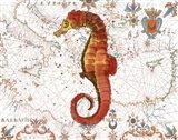 Nautical Treasures-I