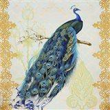 Beautiful Peacock  -  A