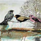 Birds Of Fire Lake  -  B