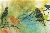 Birds On Watercolor  -  A