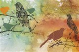 Birds On Watercolor  -  B