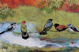 Birds The Valley