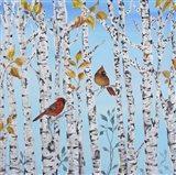 Cardinals Among The Birch  -  A