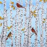 Cardinals Among The Birch  -  B