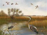 The Great Marsh - B