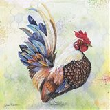 Watercolor Rooster - A