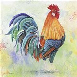 Watercolor Rooster - B