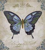 Bleu Papillon - A