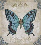 Bleu Papillon - C