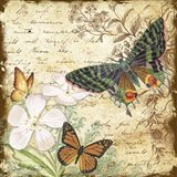 Inspirational Butterflies - D