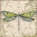 Dragonfly Daydreams - C