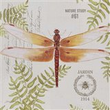 Botanical Dragonfly B