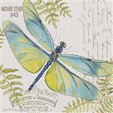 Botanical Dragonfly D