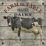 Farm To Table - Dairy