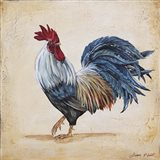 Rooster - B