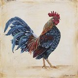 Rooster - C