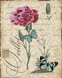 Botanical - Carnation Oeillet Damask