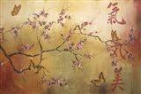 Butterfly Santuary - A
