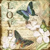 Inspirational Butterflies - Love