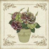 Fleur Hortensia 2
