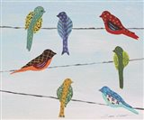 Lovely Colorful Birds On Wires 2