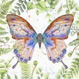 Botanical Butterfly Beauty 5