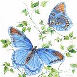 Summertime Butterflies C