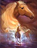 Fantasy Horse Dreams