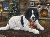 Christmas Companion
