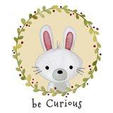 Be Curious Rabbit