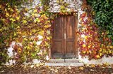 Autumn Wooden Doorway in Prague