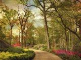 The Azalea Garden