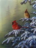 Winter Refuge - Cardinal I