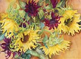 Nodding Heads Sunflowers