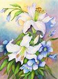 Lilies and Prairie Gentian