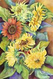 A Variety of Sunflowers