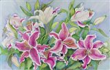 Lilies And Buds
