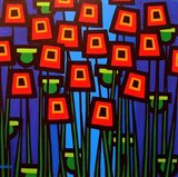 Night Poppies