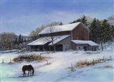 In a Winter Blue