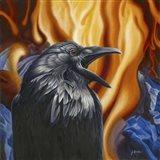 Raven Fire