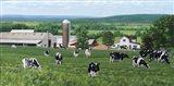 George Farm