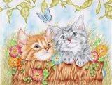 Watching Kittens