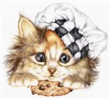 Cookie Kitten
