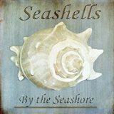 Seashells by the Seashore I