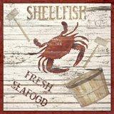 Shellfish I