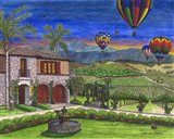 Vineyard Balloons