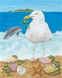 Gull Envy