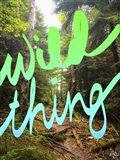 Wild Thing 2