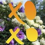 XO Flowers